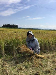 農作業をする白須なつ