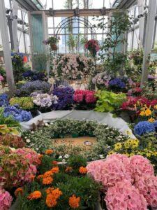 色鮮やかな花々